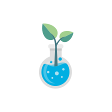 Illustration of a plant in a Florence flask